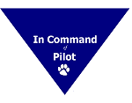 In Command of Pilot Bandana
